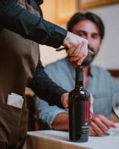 Tintilia, storia e leggende sull'unico vino autoctono del Molise