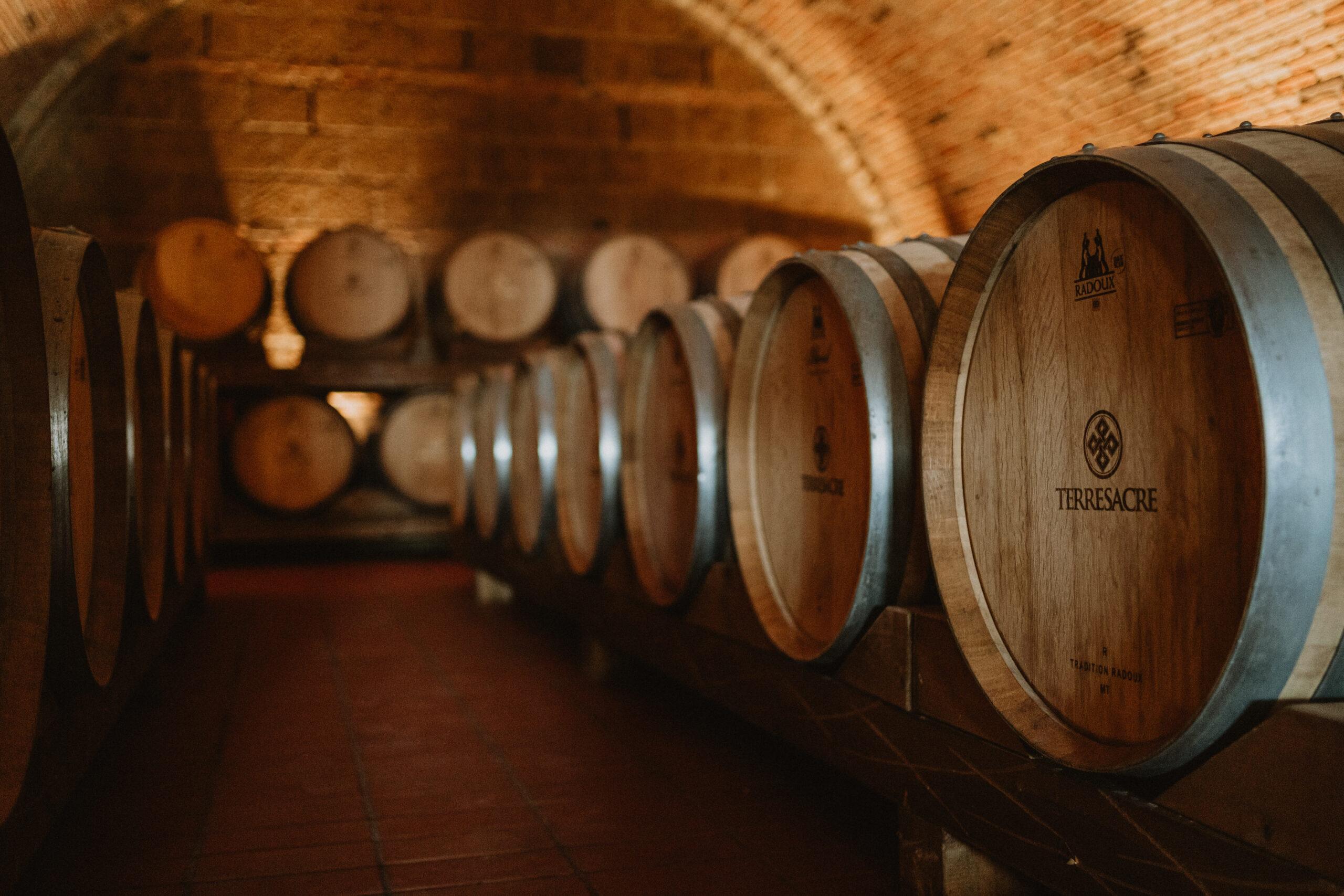 Il vino invecchiato tra miti e leggende. E' davvero più buono?